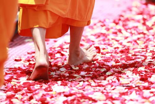 Ancient Stardust Readings Monk Feet Laura Scott Guides you
